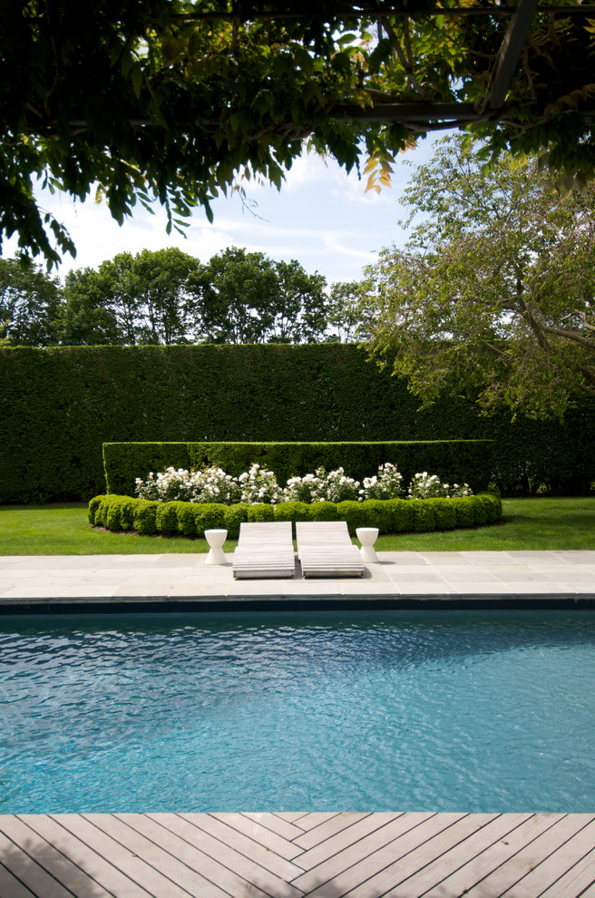 Hatfield Pool for Traditional Pool with Lounge