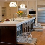 Home Depot Dishwasher Installation for Traditional Kitchen with Appliances