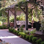 Hop Trellis for Traditional Patio with Pavilion