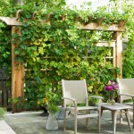 Hop Trellis for Traditional Patio with Trellis