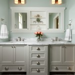 How to Get Rid of Cluster Flies for Traditional Bathroom with Marble Countertops