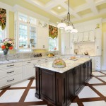 How to Get Rid of Cluster Flies for Traditional Kitchen with Porcelain Tile Floor
