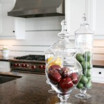 How to Get Rid of Cluster Flies for Traditional Kitchen with Traditional