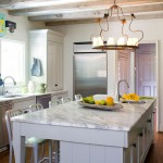 How to Get Rid of Fruit Flies in House for Rustic Kitchen with Kitchen Island