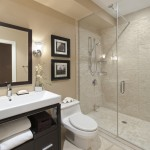 How to Unclog a Bathroom Sink for Transitional Bathroom with Bathroom Lighting