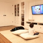 Katos for Traditional Basement with Traditional