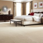 Kenny Carpets for Transitional Bedroom with Transitional
