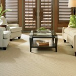 Kenny Carpets for Transitional Living Room with Transitional