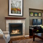 Kozy Heat for Traditional Living Room with Living
