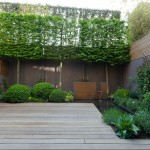 Landform for Contemporary Landscape with Decking