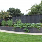 Lifescapes for Traditional Landscape with Raised Beds