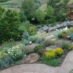 Lifescapes for Traditional Landscape with Xeriscape