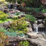 Lifescapes for Tropical Landscape with Waterfall