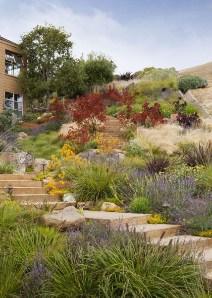 Lowes Chino Hills for Beach Style Landscape with Drainage