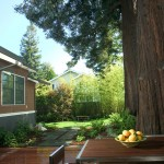 Lowes Deck Designer for Traditional Deck with Shingle Siding