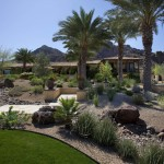 Lowes Palm Desert for Southwestern Landscape with Grass