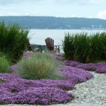 Lowes Virginia Beach for Beach Style Landscape with Purple Flowers