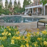 Merrifield Garden Center for Contemporary Landscape with Pool