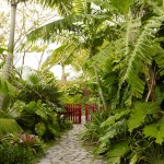 Miami Beach Botanical Garden for Tropical Landscape with Hawaii