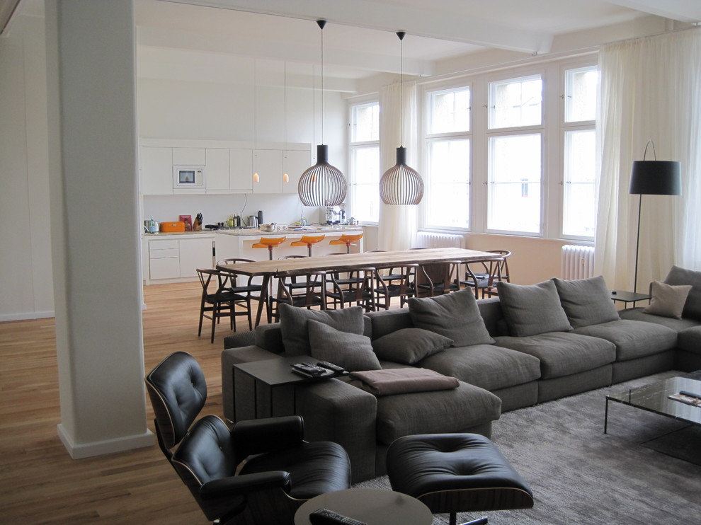 Minotti for Contemporary Family Room with Eames