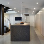 Monolithic Slab for Contemporary Kitchen with Leila Latchin Interior Designer