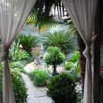 New Orleans Points of Interest for Tropical Landscape with Tropical