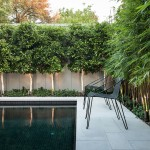 Nps Pool Supply for Contemporary Pool with Shrubs