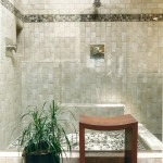 Oregon Decorative Rock for Contemporary Bathroom with Potted Plant