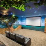 Orland Park Theater for Traditional Home Theater with Wall Mural