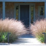 Osuna Nursery for Contemporary Landscape with Front Door