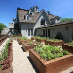 Pardee Homes Las Vegas for Traditional Landscape with Edible Garden