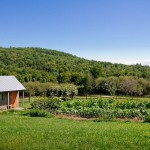 Peaceful Valley Farm Supply for Farmhouse Shed with Rural