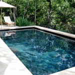 Pebble Tec Colors for Contemporary Pool with Metal Railing