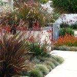 Phormium for Contemporary Landscape with Sandblasted Block Retaining Walls
