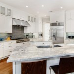 Plumbers Supply Louisville for Transitional Kitchen with Danze