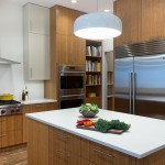 Plyboo for Contemporary Kitchen with Cooktop