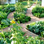 Potomac Garden Center for Traditional Landscape with Green Shutters