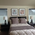 Qmotion Shades for Modern Bedroom with Roller Shades