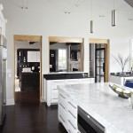 Quartz Countertops vs Granite for Contemporary Kitchen with Dark Stained Wood Floor