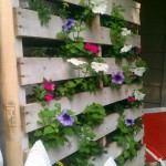 Repurposed Pallets for Eclectic Landscape with Eclectic