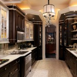 Satco Lighting for Traditional Kitchen with Dark Wood Custom Cabinets