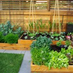 Sloat Garden Center for Contemporary Landscape with Shrubs