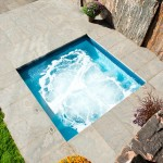 Spca New Orleans for Modern Pool with Patio