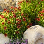 Summers Heating and Cooling for Mediterranean Landscape with Garden