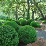 Taliesin Spring Green Wi for Traditional Landscape with Walkway