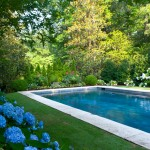 Teddy Bear Pools for Traditional Pool with Hydrangea