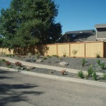 Tlc Landscaping for Contemporary Landscape with Plants