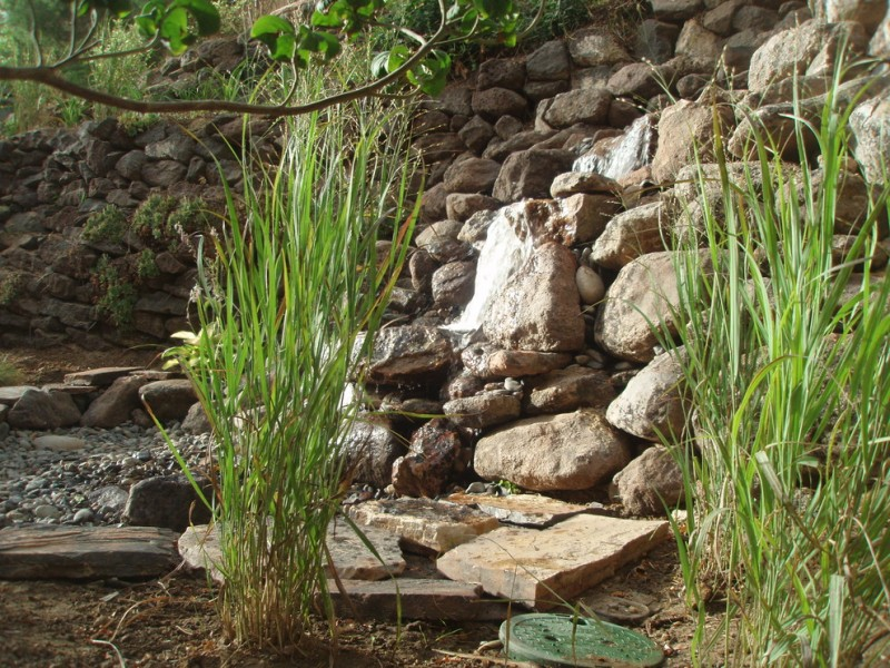 Tlc Landscaping for Traditional Landscape with Disappearing Waterfall
