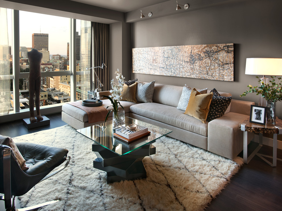 Urban Outfitters Rugs for Contemporary Living Room with Gray Sofa