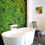 Vertical Bathtub for Contemporary Bathroom with Greenery Wall